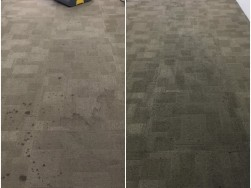 Carpet Shampooing Before After 2