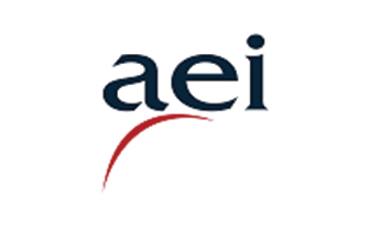 AEI Corporation Ltd