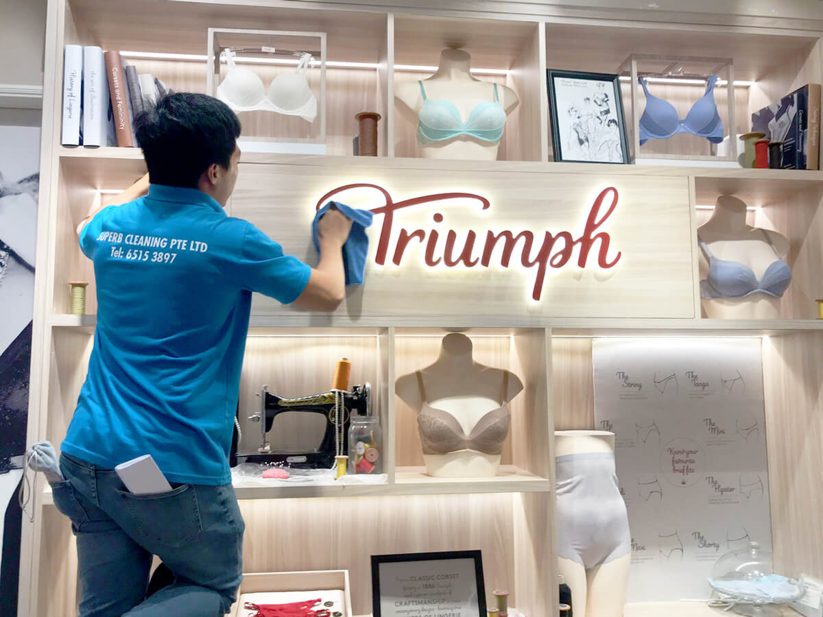 Triump Cleaning Services